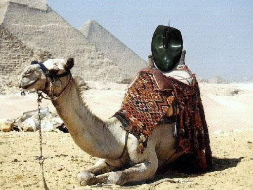 Ah Egito... bons tempos...