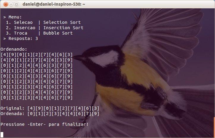 Imagem do Programa rodando no Linux