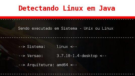 Detectando Linux em Java