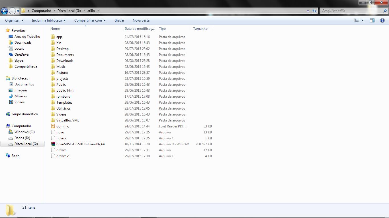 Visualizando os arquivos pelo Windows
